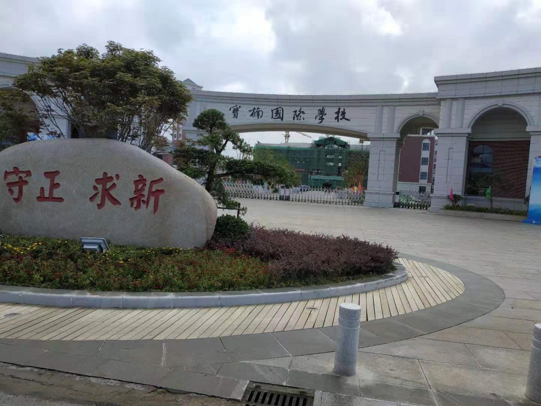 宝楠国际学校:千舟竞发新时代 一流服务创未来