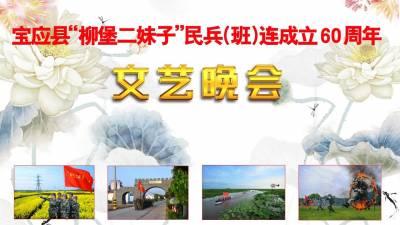 """宝应县""""柳堡二妹子""""民兵(班)连成立60周年文艺晚会"""