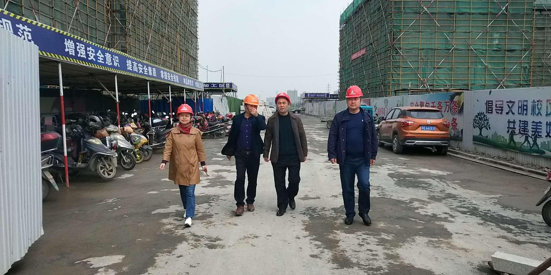 安宜镇建筑业分管领导赴在建工程检查安全生产工作。