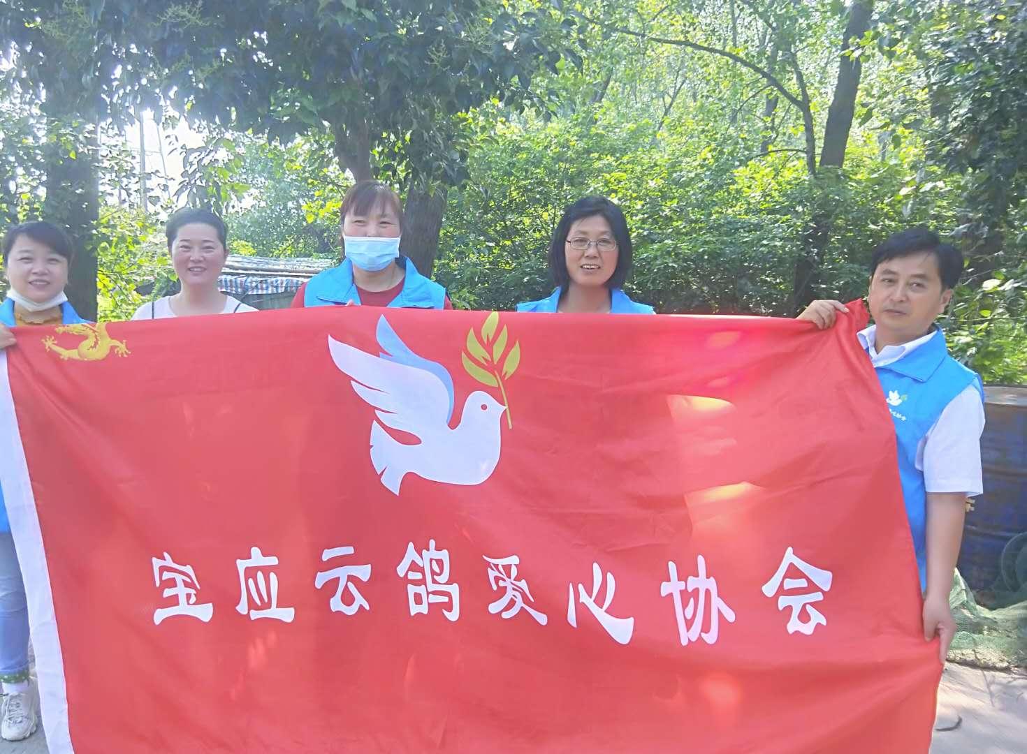 宝应云鸽爱心协会第78期金宝渔业村(避风港)