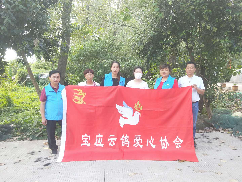 宝应云鸽爱心协会第87期金宝渔业村避风港